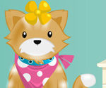 Cutie Pet Care